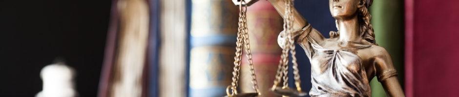 Law License Defense lawyer minnesota
