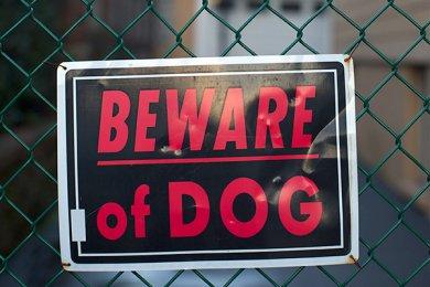 lord heinlein dog bite